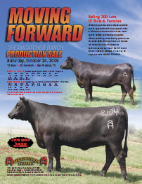 2009 Female Sale Ad